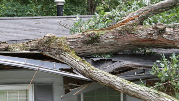 What Do I Do If My Roof Has Storm Damage?